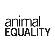 Voicing videos for Animal Equality
